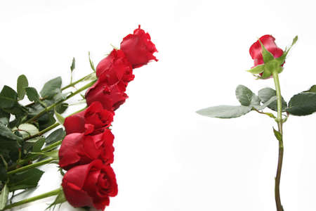 red roses garland Stock Photo - 697343