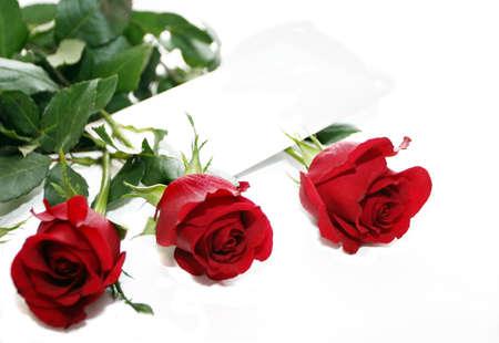 three red roses photo