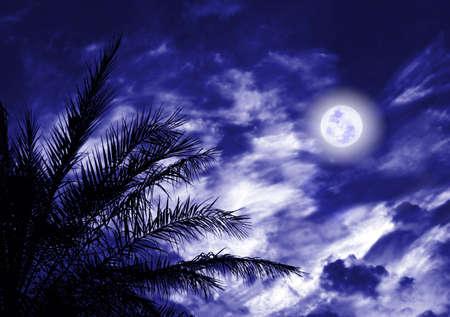 night moon: Luna azul de la noche