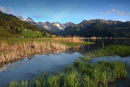 sweats: The green Swiss meadows lay in morning chill and cooling sweats. Stock Photo