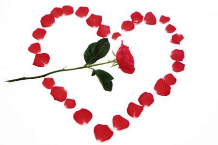 Roses Petal Heart photo