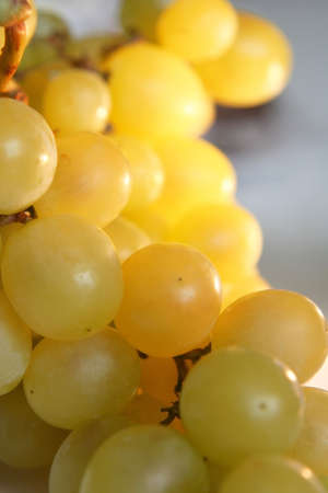 Gold grapes in close up Stock Photo - 745356