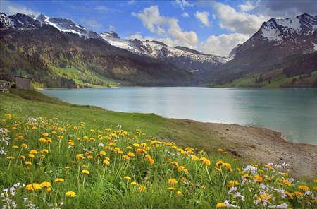 Spring Swiss lake Stock Photo