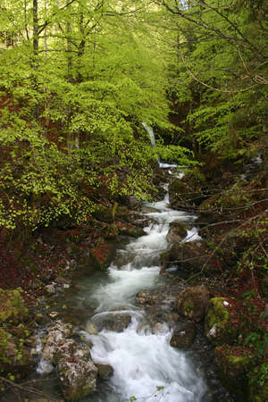 Spring waterfalls Stock Photo - 781336