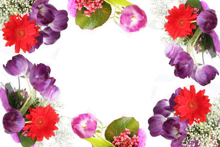 Spring flower tulips beautiful colorful flowers making border framed isolated love letter horizontal background photo