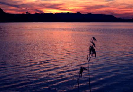 Tender sunset on swiss lake Stock Photo - 4254730