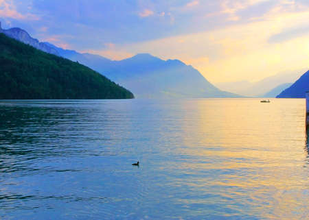 Tender color of swiss lake Stock Photo - 4254726