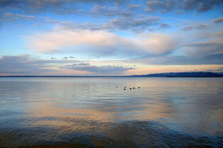 Swiss lake at sunset time Stock Photo - 4254896