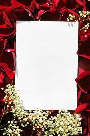 Red roses in fFrame photo