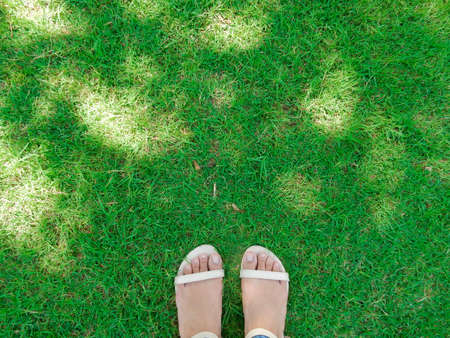 foot wear: Foot wear cream color shoes over green grass with sunlight Stock Photo