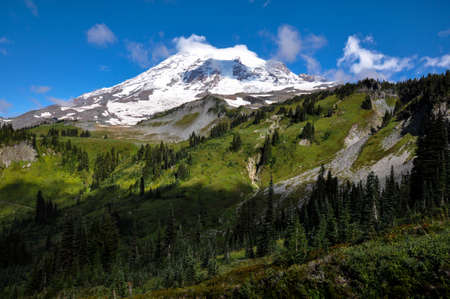 tats: Paradise trail in Mount Rainier National Park, Washington, USA.