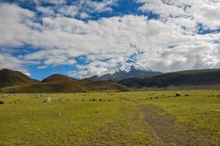 excitation: Volcano in Cotopaxi National Park, Ecuador. Stock Photo