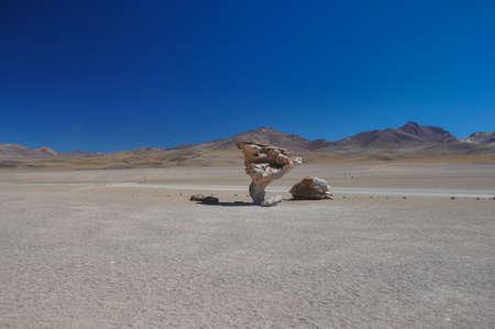 lipez: Piedra del Arbol, Sur Lipez, South Bolivia.
