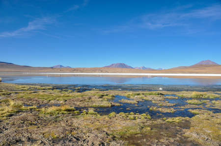 lipez: Gorgeous landscapes of Sur Lipez, South Bolivia.