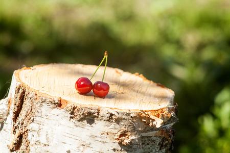 berry: Cherry on a stump