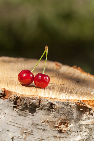 Cherry on a stump