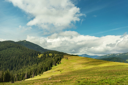 Summer landscape in Carpathian mountains and the blue sky with clouds