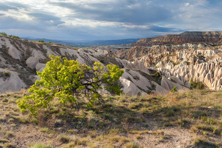 Wonderful landscape of Cappadocia in Turkey near Gereme