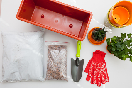 Preparation of seeds and room for planting in the soil. Plastic container, gloves, drainage, fertilizer, earth, seeds, plants, flower pot on white table. Stock Photo