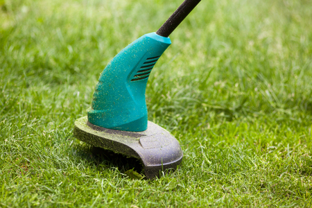 Gasoline lawn trimmer mows juicy green grass on a lawn on a sunny summer day. Garden equipment Stock Photo