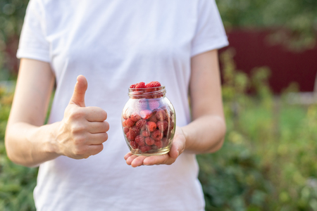 Advertising concept. Close up cropped photo of lady holds transparent container with raspberry berries on the palm of the hand isolated on blur background 免版税图像