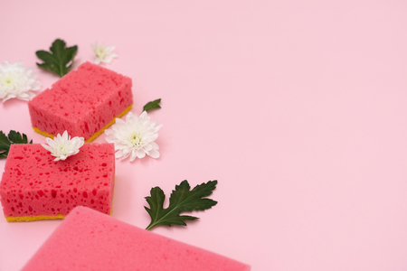 Some polyurethane sponges, white flowers and green leaves laying isolated on pastel pink background with empty space for text Imagens