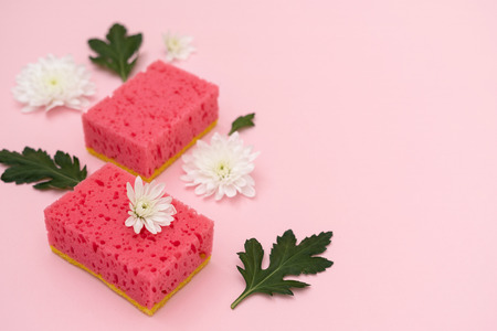 Two polyurethane sponges with white flowers and green leaves laying isolated on pastel pink background with empty space for text Imagens