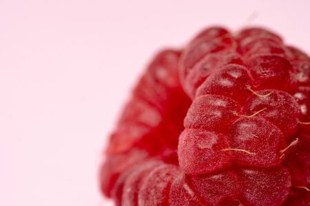 Selective focus and macro view of yummy, sweet and ripe raspberry fruits on pastel pink background with copy space