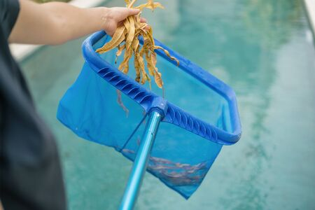 Cropped view of hands with special skimmer mesh equipment cleaning swimming pool of fallen leaves, holding foliage against transparent water with copy space on blurred background