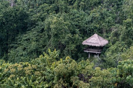 Wooden gazebo on beautiful jungle landscape. Bright colorful woods with green grass and trees on wild hill with peaceful nature