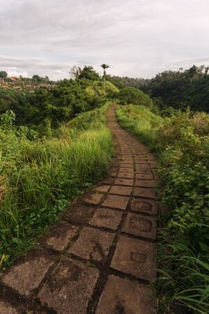 Vertical view of empty and beautiful landscape on Campuhan Ridge Walk, Ubud, Bali, Indonesia. Footpath in bright colorful meadows with green grass on the hillside valley 写真素材