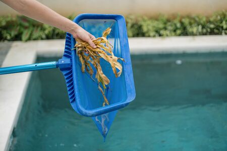 Cropped view of hands with skimmer net equipment holding fallen leaves, cleaning swimming pool, standing against clear water with copy space