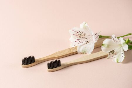 Sustainability lifestyle concept. Two recycled and eco friendly bamboo toothbrush lying in flowers isolated on pastel pink background with copy space