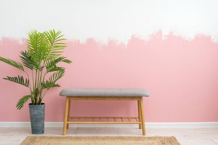 Renovation apartment concept. Contemporary living room in house with modern interior, comfortable furniture, bench seat, woven rug, green houseplant in flowerpot against pink wall on background