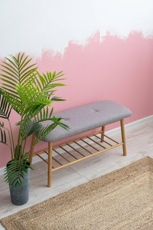Vertical and high angle view photo of modern room with scandinavian interior, comfortable furniture, wooden bench seat, woven carpet, green houseplant in flowerpot against pink wall on background Imagens
