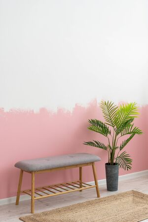 Vertical photo of interior in living room with comfortable furniture, bench seat, woven carpet, green houseplant in flowerpot against painting pink wall on background