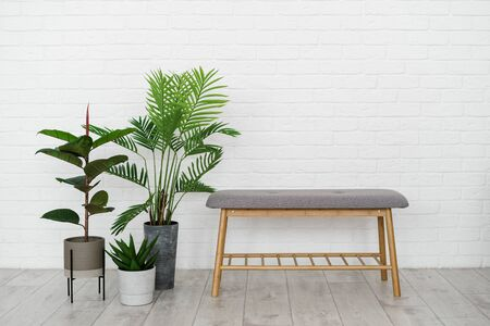 Contemporary interior in apartment with comfortable furniture, bench seat, green and natural houseplant in flowerpot against white brick wall on background Imagens