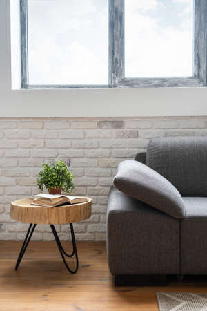 Vertical view of grey textile sofa under window in contemporary interior with new furniture. Book and houseplant in flower pot on coffee table near rug on wooden floor Standard-Bild