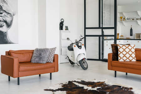 Comfortable living room with modern interior design, pillows on leather armchair, scooter at concrete floor near skin carpet and painting on white wall Imagens