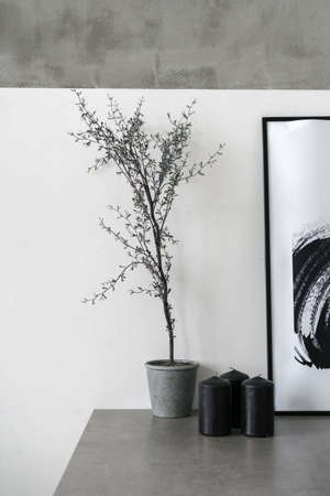 Home decor on shelf. Vertical photo of living room at home with modern interior, painting in frame, houseplant and black candles against white concrete wall