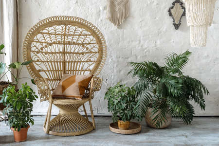 Cozy room with pillow wicker armchair, green fresh houseplants in flower pots against loft wall in comfortable house with interior design in boho chic style