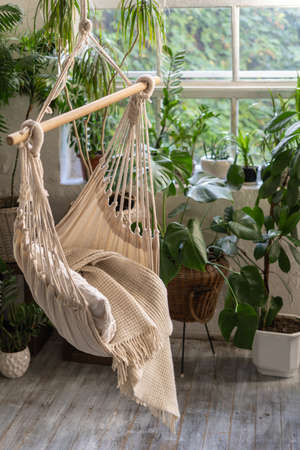 Vertical photo of white rope swing in living room against large window and green houseplants in flower pot. Comfort room with wooden floor and cozy interior design