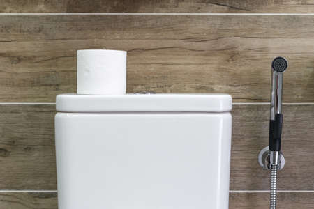 Modern bathroom interior with white ceramic toilet tank with toilet paper in it and tap on side against wall with wood pattern structure on background