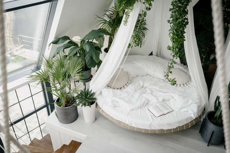 View from above of cozy light bedroom in bohemian style with round canopy bed on second house floor, decorated with different green tropical plants in flower pots on floor and ceiling, no people 免版税图像