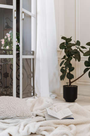 Open book on fluffy light colored bedspread on spacious bed with pillow, glass balcony doors open revealing hanging flowers, room decorated with green potted plant standing on floor Standard-Bild