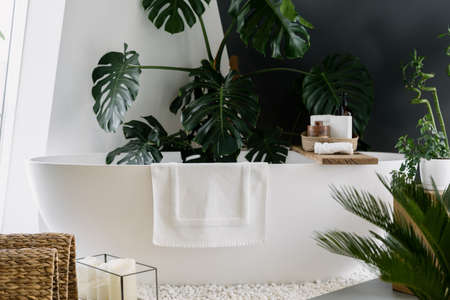 Modern white bathtub with towel and wooden shelf for beauty products. Bohemian design in bathroom decorated with green tropical plants and other natural home decor elements Standard-Bild