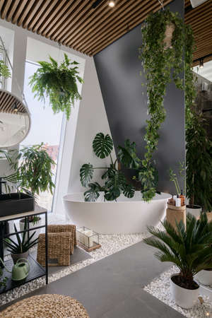 Your own oasis at home. Cozy bathroom in urban jungle style with white freestanding tub, different tropical plants, natural wooden and wicker decor. Bath in hotel room with modern interior design Standard-Bild