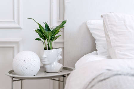 Green plant in futuristic white grecian bust pot with green plant and contemporary round lamp on bedside table standing close to bed with white linen in room with minimalistic design, cropped shot Standard-Bild