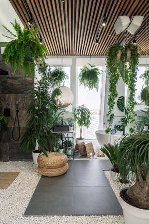Concept of urban jungle interior. Vertical shot of cozy fully furnished bathroom decorated with green plants and natural organic design elements, white bathtub near panoramic window on pebble floor Standard-Bild