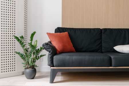 Sofa at living room interior, home design. Black couch at scandinavian apartment, modern house decoration with furniture, green plant. Contemporary style flat with nobody indoor.
